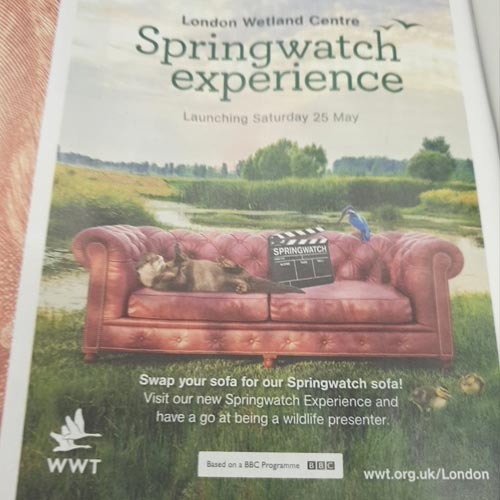 BBC Springwatch was used by WWT for a half term activation at The Wetlands Trust in Barnes.