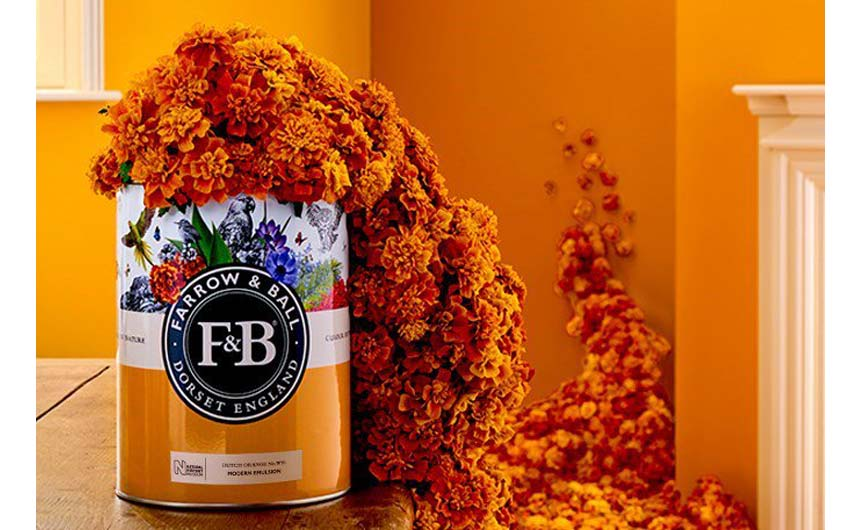 Farrow & Ball has launched a collaboration with Natural History Museum.