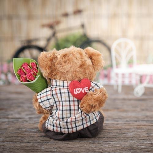 Valentinesbear500x500