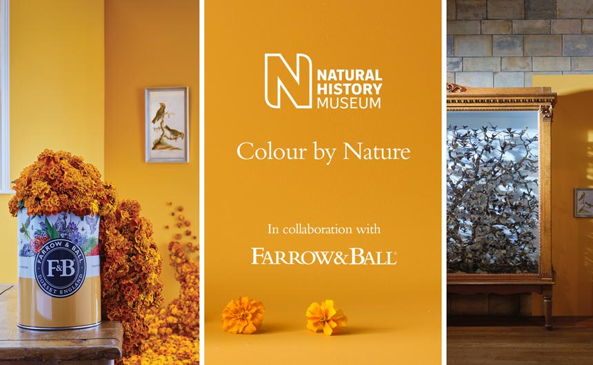 The Farrow & Ball x NHM collaboration shared respect and curiosity for the natural world.