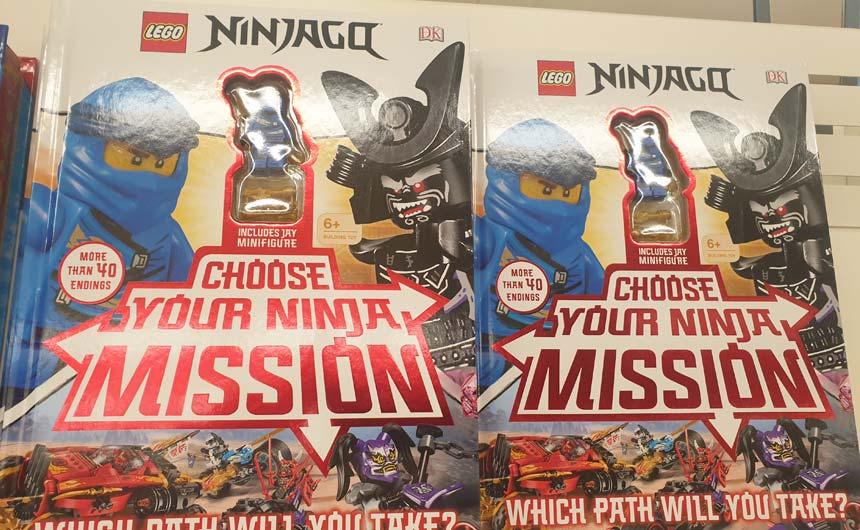 LEGO Ninjago Adventure Books come with a mini figurine.