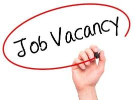 job-vacancy-2