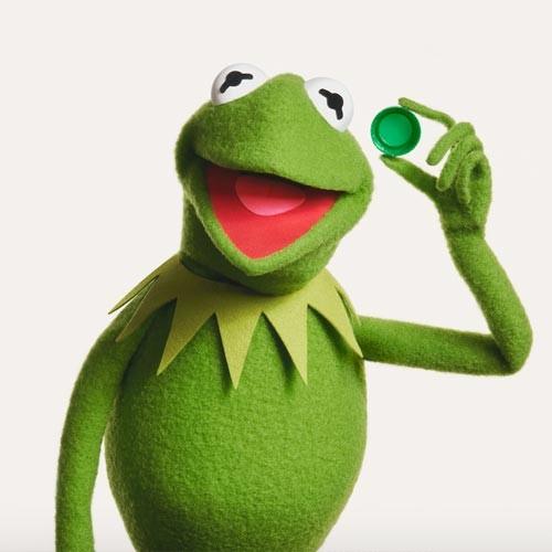 Kermit500x500