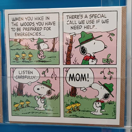 The Peanuts cards from Hype Associates use comic strips to give them a strong identity.