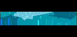copyrights logo